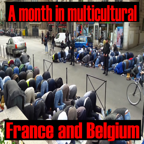Islam and Multiculturalism in France and Belgium