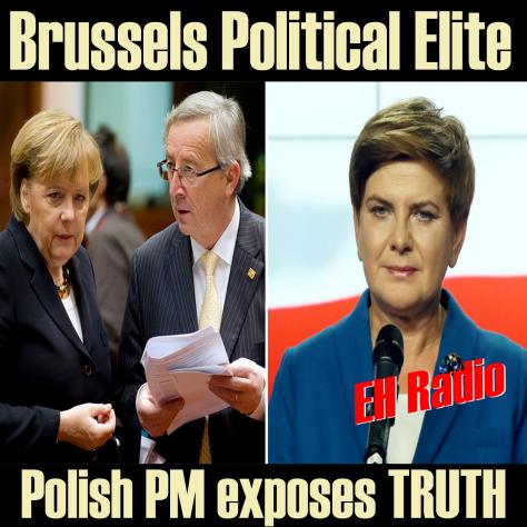 Brussels political elite