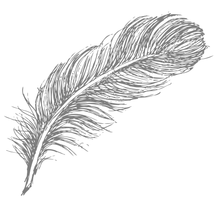 feather-birds-of-a-feather